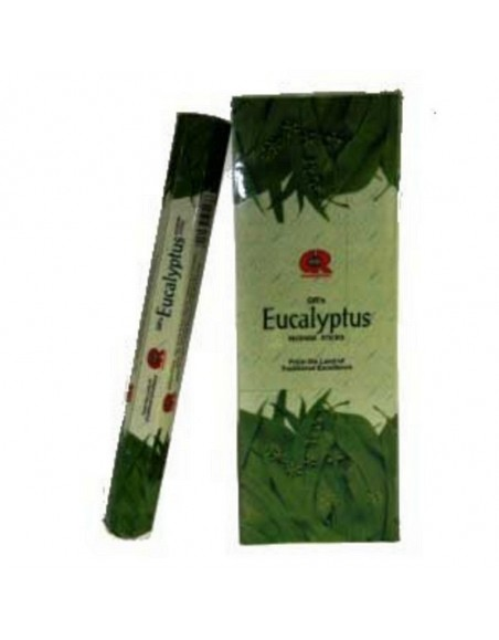 Encens Eucalyptus GR INTERNATIONAL