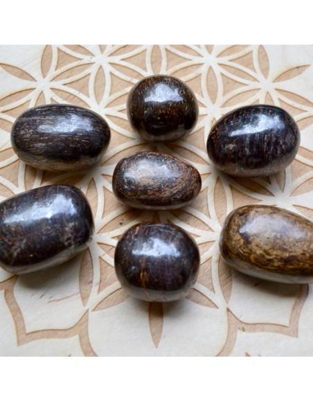 Bronzite - Pierre roulée - 30 à 35 gr