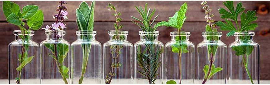 Huiles essentielles bio et naturelles : Kementari Shop